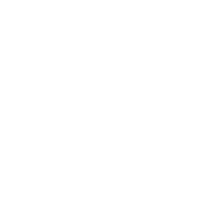 N-Tech.Lab Ltd