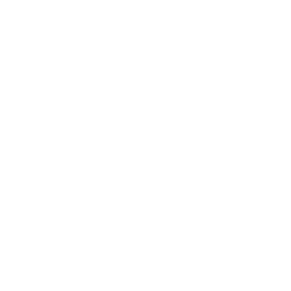 Movus Holdings Pty Ltd.